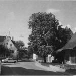 The Main Street of Wankheim