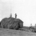 Haying, ca. 1915 John Trant and Lewis William Walker on hay wagon Jacob Walker driving tractor