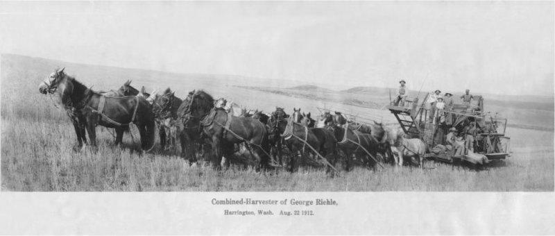 Mährdrescher gezogen von Pferden um 1912 von Johann Georg Riehle